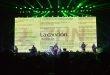 Más de 30 mil almas disfrutaron la actuación del Conjunto Primavera