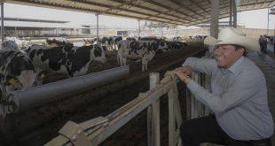 Impulsar la actividad lechera en Zacatecas es una prioridad: David Monreal