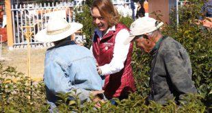 El Gobierno de México cumple su compromiso con los adultos mayores y contribuye a su bienestar: Verónica Díaz Robles
