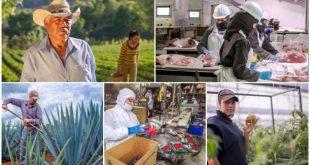 Brinda el T-MEC certidumbre a un comercio agroalimentario que alcanza 90 mil mdd anuales, en América del Norte: Secretario Villalobos
