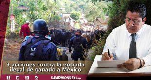 Más presupuesto sanitario, presencia de la GN y colaboración con Guatemala