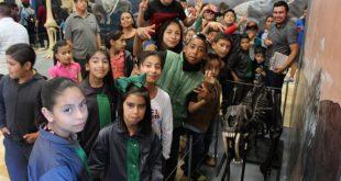 Casi 22 mil personas asistieron a la exhibición Megabestias del Pasado