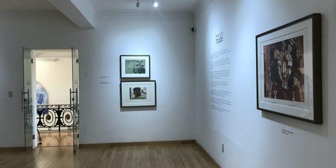 IZC comparte en sus redes sociales, la exposición de la obra de Francisco Toledo